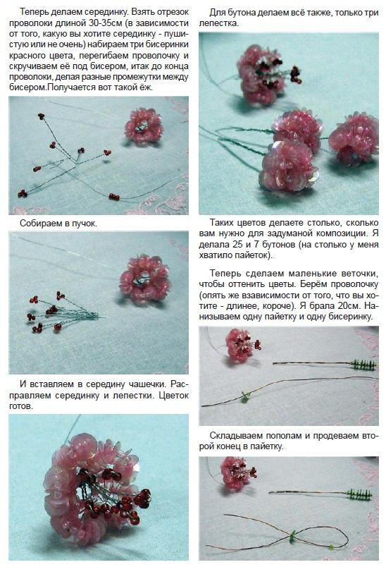 zveti2